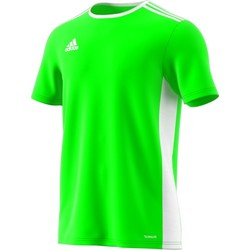 Clothing Men short-sleeved t-shirts adidas Originals Entrada 18 Green