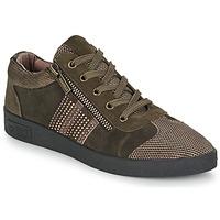Shoes Women Low top trainers Mam'Zelle BADRIA Brown