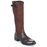 Shoes Women High boots Mam'Zelle XANE Brown
