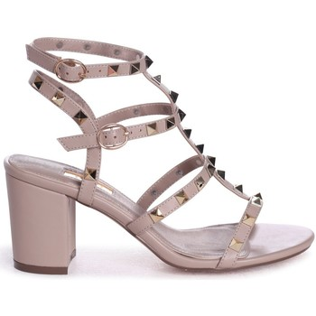 Shoes Women Sandals Linzi TESSA Taupe