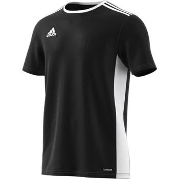Clothing Men short-sleeved t-shirts adidas Originals Entrada 18 White