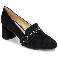 Shoes Women Heels Perlato HAREA Cam / Black