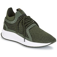 Shoes Men Low top trainers Puma TSUGI NETFIT V2 EVOKNIT.FO Kaki