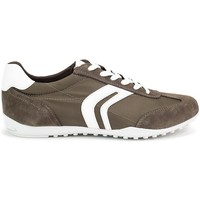 Shoes Men Low top trainers Geox Wells Olive
