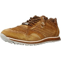 Shoes Men Low top trainers Cetti C848 V18 Light Brown