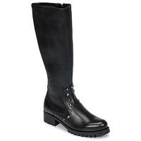 Shoes Women High boots Unisa IKERI Black