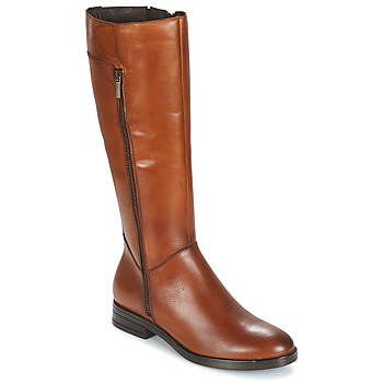 Shoes Women High boots Betty London JANKA Brown