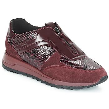 Shoes Women Low top trainers Geox D TABELYA Bordeaux