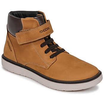 Shoes Boy Hi top trainers Geox J RIDDOCK BOY WPF Brown