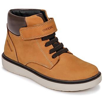 Shoes Boy Hi top trainers Geox J RIDDOCK BOY WPF Brown