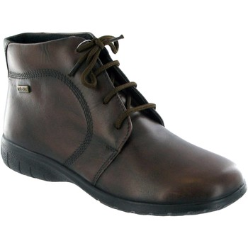 Shoes Women Mid boots Cotswold Bibury Ladies Ankle Boot / Womens Boots Brown