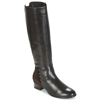 Shoes Women High boots André DORA Brown