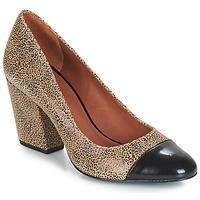 Shoes Women Heels André FAUVE Beige