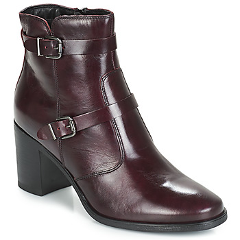 Shoes Women Mid boots André TORI Bordeaux