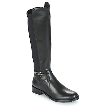 Shoes Women High boots André CALECARA Black