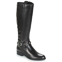 Shoes Women High boots André TESS Black