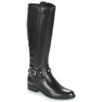 Shoes Women High boots André TESS Black