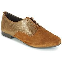 Shoes Women Derby Shoes André COMPLICE Brown