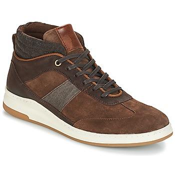 Shoes Men Hi top trainers André GLASGOW Brown