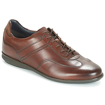 Shoes Men Low top trainers André CAMERINO Brown