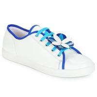 Shoes Women Low top trainers André GUIMAUVE White