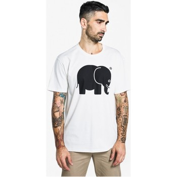 Clothing short-sleeved t-shirts Trendsplant Camiseta Cl BLANCO