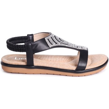 Shoes Women Sandals Linzi MAY Black