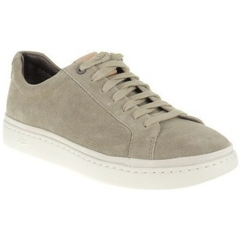 Shoes Men Low top trainers UGG Cali Brown