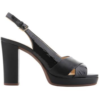 Shoes Women Sandals Geox D Mauvelle C - Naplak+ Geobuck D724LC 06758 C9999 black