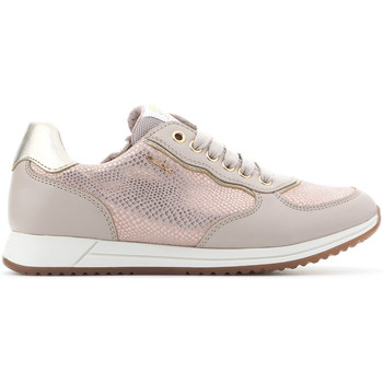 Shoes Girl Low top trainers Geox J Jensea G.D J826FD 007BC C8617 beige, gold