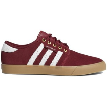 Shoes Men Low top trainers adidas Originals Seeley Cherry