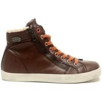 Shoes Women Hi top trainers Little Marcel Baskets Pratik H14IGC009 Marron Brown