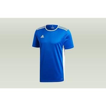 Clothing Men short-sleeved t-shirts adidas Originals Entrada 18 Blue
