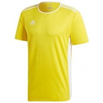 Clothing Men short-sleeved t-shirts adidas Originals Entrada 18 Jsy Yellow