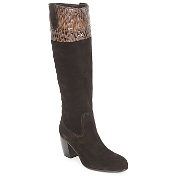 Shoes Women High boots C.Doux ENZO BOT Brown