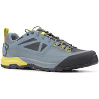 Shoes Men Low top trainers Salomon Trekking shoes  X Alp SPRY GTX 401621 grey, yellow